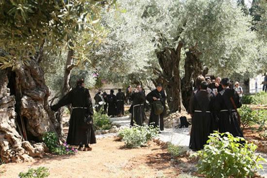 Gerusalemme, 6 luglio. I frati del capitolo under 10 approdano all'Orto degli Ulivi.