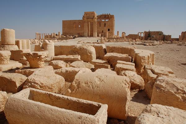 Uno sguardo alle vestigia di Palmira. (clicca sulla foto per accedere alla galleria fotografica)