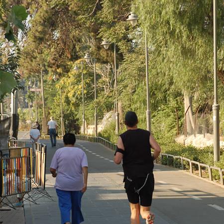 Mattino presto sulla pista ciclabile che corre accanto alla stazione e lungo il vecchio tracciato delle rotaie.