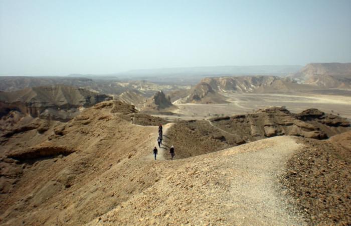 Superba panoramica del <i>wadi</i> Paran.