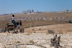 Reinsediamento delle popolazioni beduine in Israele: l'Onu alza la voce