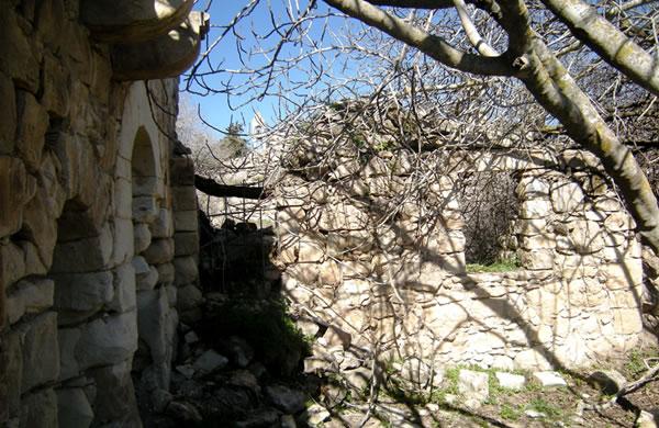 Il piccolo campanile della chiesa occhieggia tra i ruderi del villaggio distrutto.
