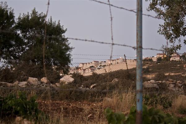Un insediamento israeliano sorge poco distante.