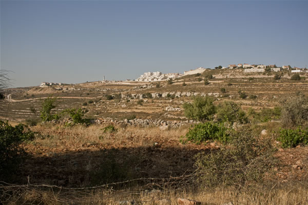 Il panorama collinare caratterizzato dagli antichi terrazzamenti agricoli e dai nuovi quartieri edificati da Israele.