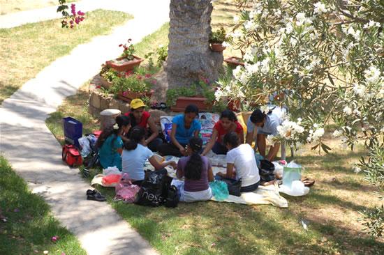 C'è chi coglie l'occasione per un picnic tra amici in un angolo tranquillo e sicuro.