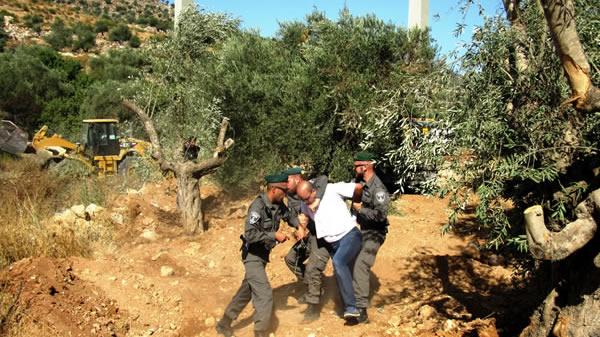 Un civile palestinese viene fermato dai militari israeliani dislocati a Cremisan a protezione delle ruspe.