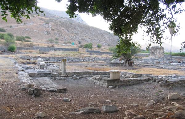 Linfa dell'ulivo: un evento per scoprire il «Gesù storico»