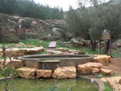 Le fonti d'acqua usurpate in Cisgiordania censite in un rapporto Onu