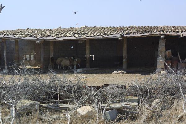 Quel che resta del monastero medievale, utilizzato oggi per il ricovero degli animali.