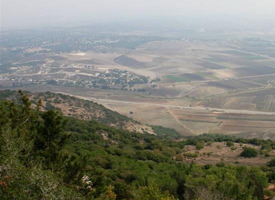 Monte Carmelo. Nella vigna di Dio