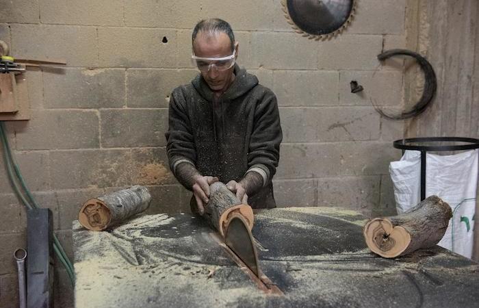 La lavorazione parte dal tronco del legno d'ulivo, segato in sezioni.