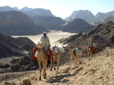 Le ferite del Sinai