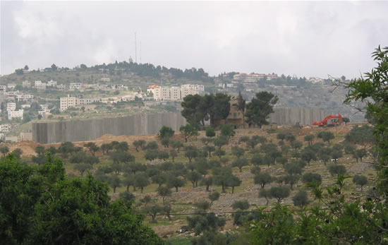 Vite murate