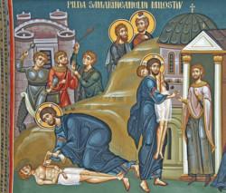 Il Samaritano dell'Umanità