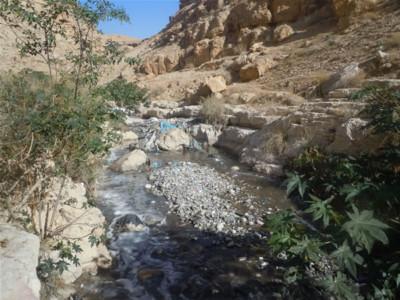 I reflui non trattati, l'altra faccia dell'emergenza idrica