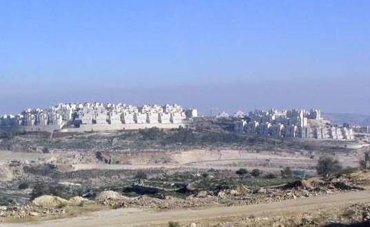 Ricco e rude. Un sito per la Siria