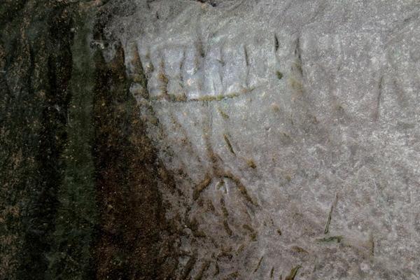 La <i>menorah</i> a sette bracci, incisa anch'essa nella cisterna, si regge su uno stelo tripode.  (foto Saʽar Ganor, Israel Antiquities Authority)