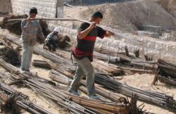 Il diritto al lavoro in Palestina resta un miraggio