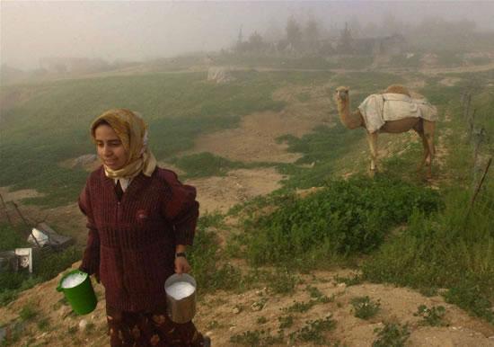 Beduini. Il popolo invisibile