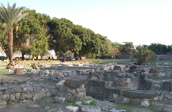 Uno scorcio degli scavi archeologici intrapresi dallo<i> Studium Biblicum Franciscanum </i>sul sito dell'antica Migdal.