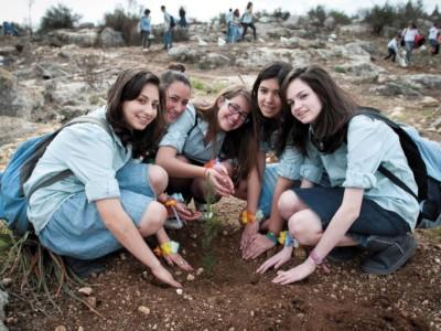 Israele, il Capodanno degli alberi
