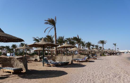 Egitto insicuro, i turisti disertano