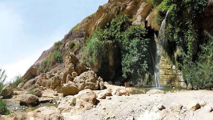 La sorgente che alimenta l'oasi di Ein Ghedi (Archivio ETS)