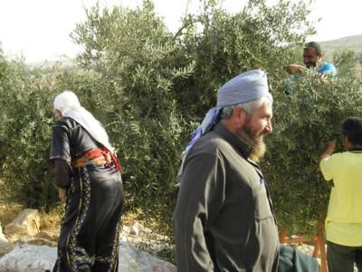 Il mio amore ferito per Israele