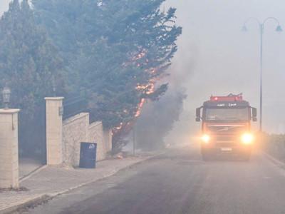 Il verde in Libano è andato in fumo