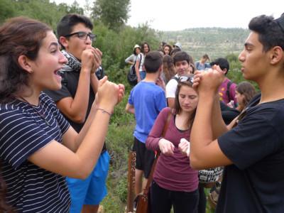 Israele, «Così siamo cresciuti in un'Oasi di pace»