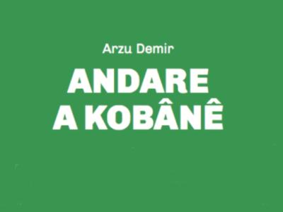 Amici e nemici di Kobane