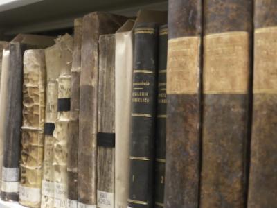 Biblioteca custodiale, digitalizzazione in corso