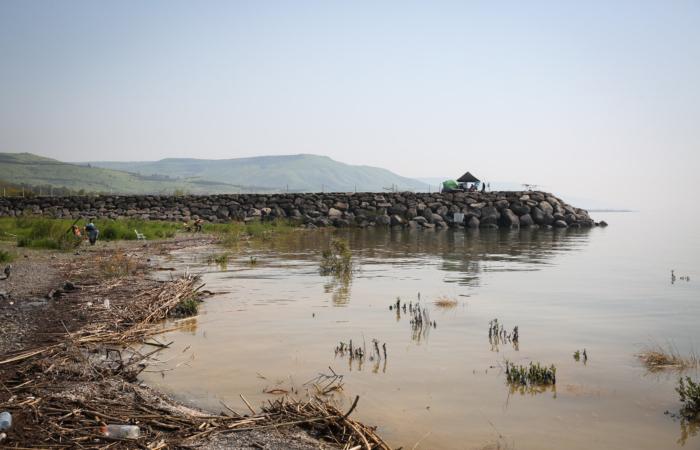 Chiamato dagli ebrei Kinneret, il lago di Tiberiade in uno scorcio del lato settentrionale a marzo 2019. (foto David Cohen/Flash90)