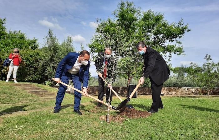 Un ulivo viene piantato nel giardino come simbolo e ricordo dell'invocazione di pace.