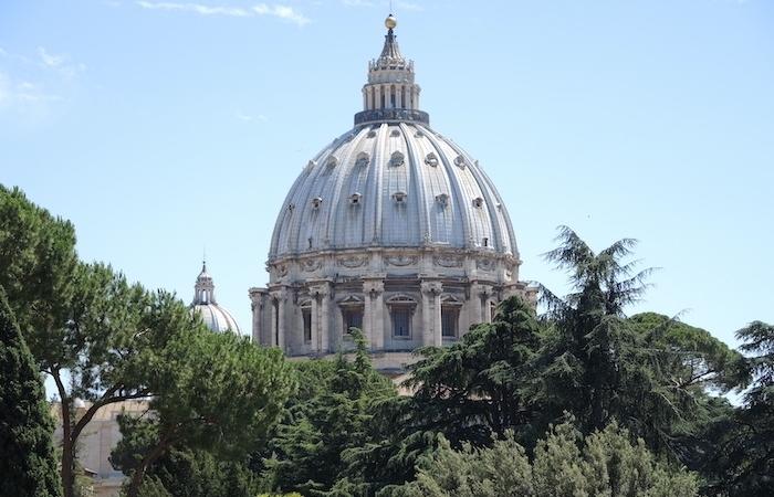 Il Papa alla Roaco: Grazie alle tante persone solidali!