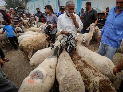 Islam, cosa c'è da sapere sulla festa del Sacrificio