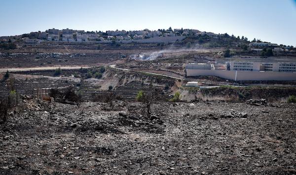 Collina incendiata Tent of Nations Betlemme